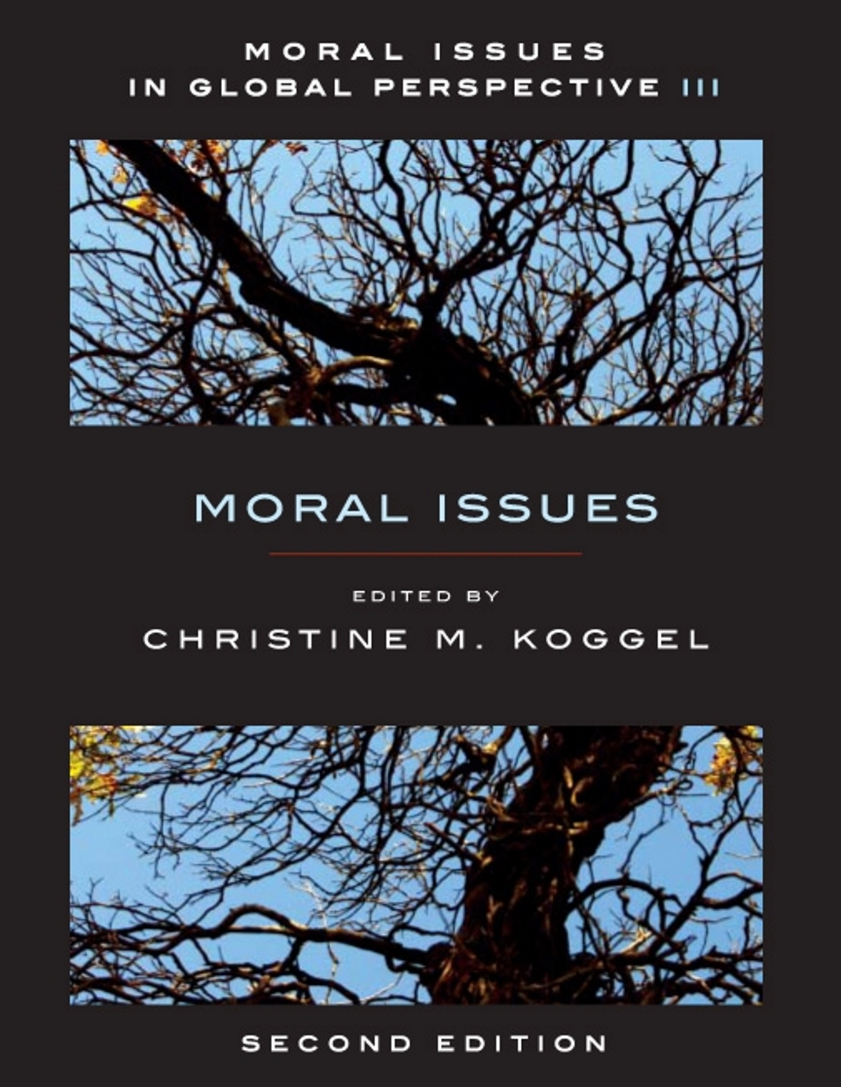 moral issues in global perspective volume moral issues moral issues in global perspective volume 3 moral issues second edition broadview press